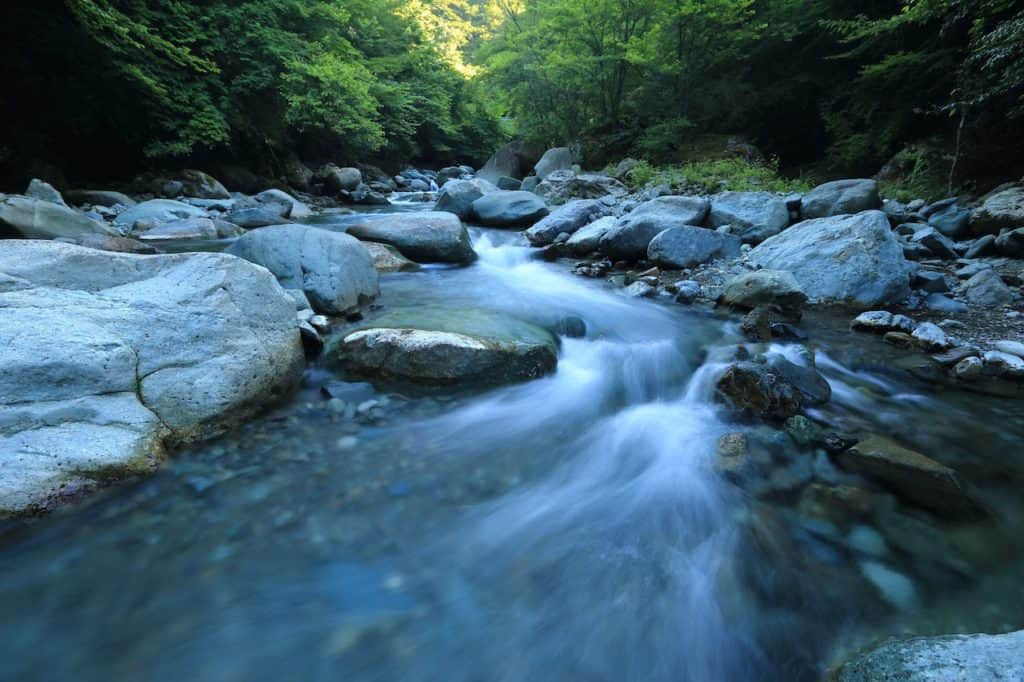 waters flow in beautiful forest stream